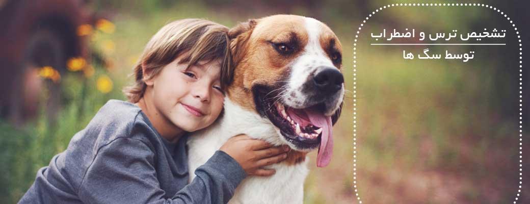 سگ ها ترس و استرس را در وجود انسان احساس می کنند.