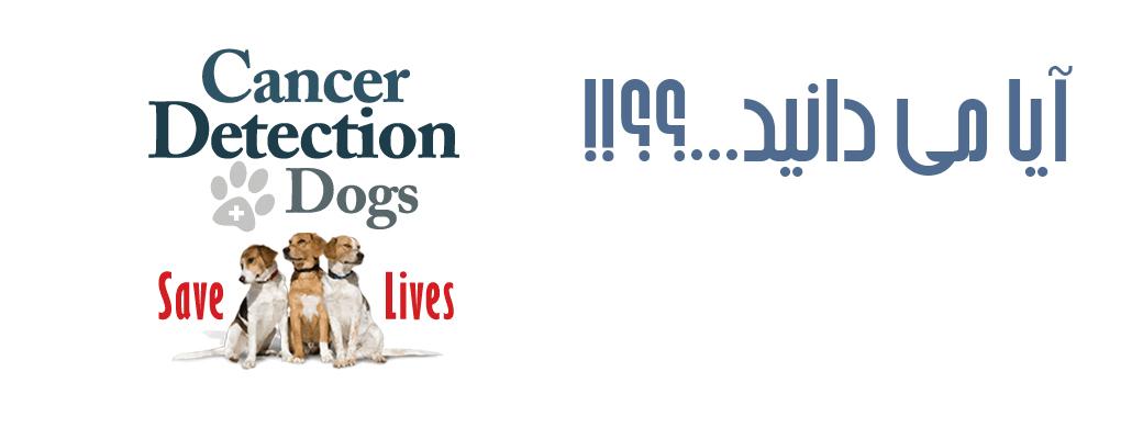 تشخیص بیماری توسط سگ