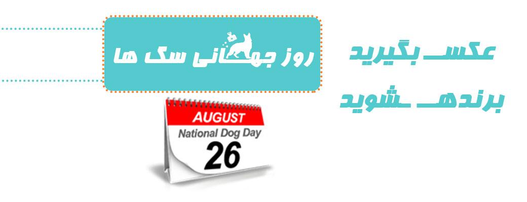 به مناسبت روز جهانی سگ ها