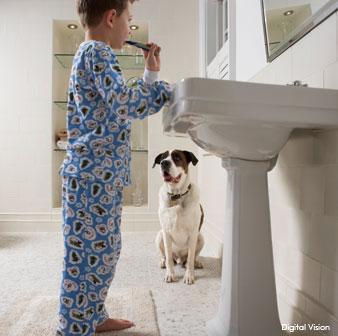 سگ های تشخیص دیابت