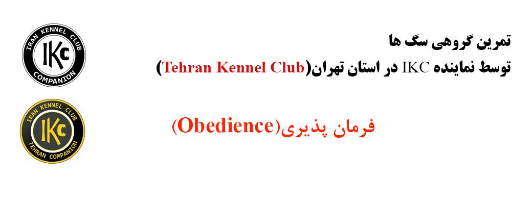 برگزاری تمرین گروهی سگ ها توسط تهران کنل کلاب